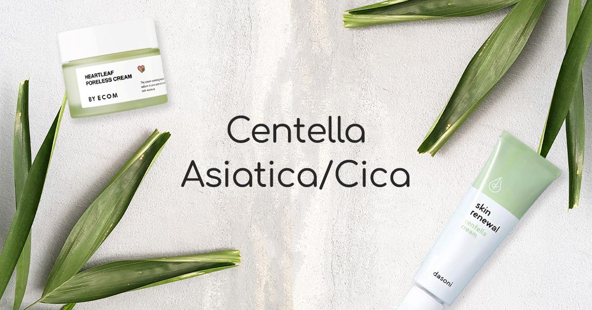 Centella Asiatica / Cica